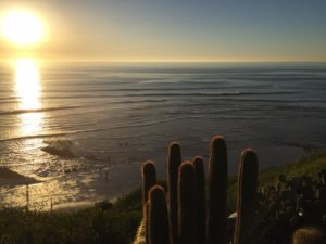 A view from the Self-Realization Fellowship at Encinitas, California